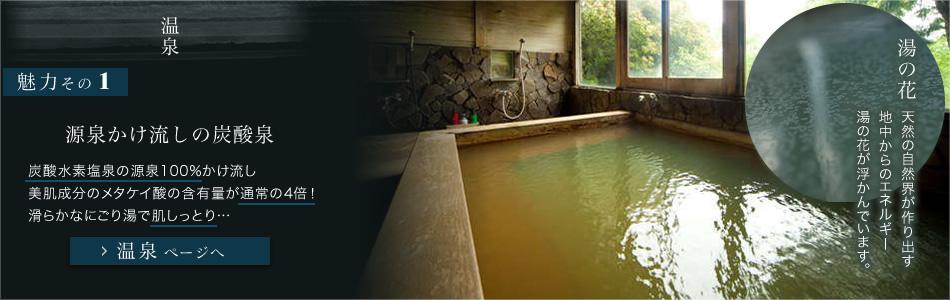 源泉かけ流しの炭酸泉 温泉ページへ