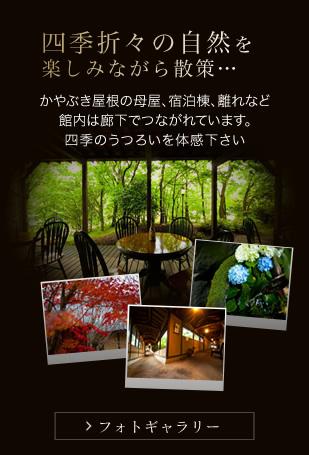 四季折々の自然を楽しみながら散策… フォトギャラリーページへ